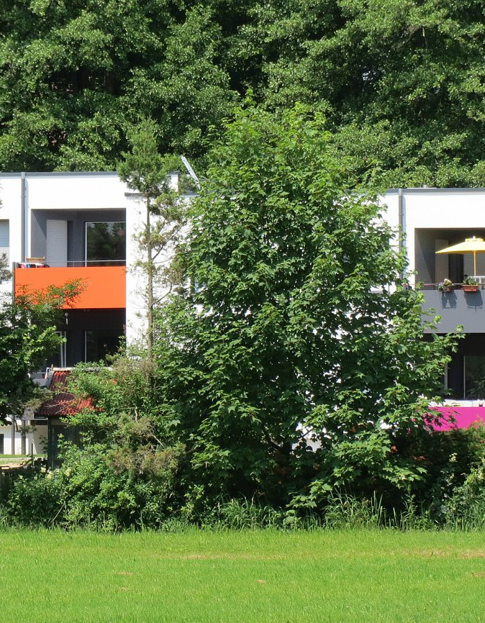 Sanierung Mehrfamilienhaus 1